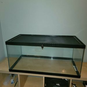 Reptile Tank for Sale in New London, CT