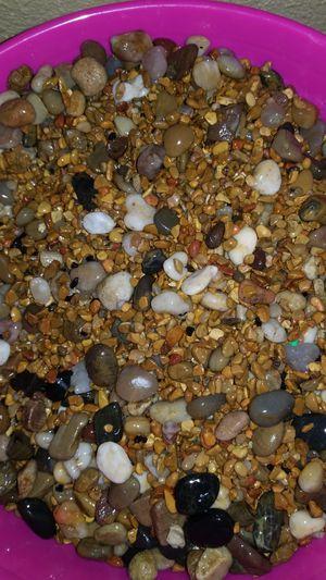 Aquarium gravel for Sale in St. Petersburg, FL