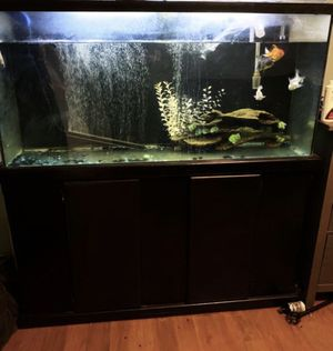 Gold Fish Tank for Sale in Riverside, CA