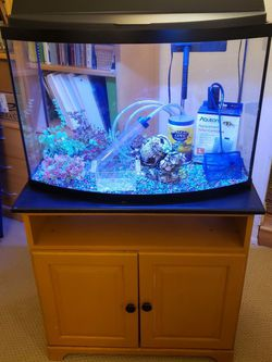 Large 36g Bowfront Aquarium w/stand/supplies for Sale in Yorba Linda,  CA