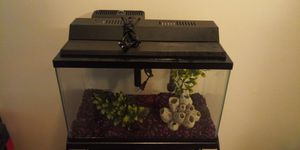 10 gallon fish tank for Sale in Baltimore, MD