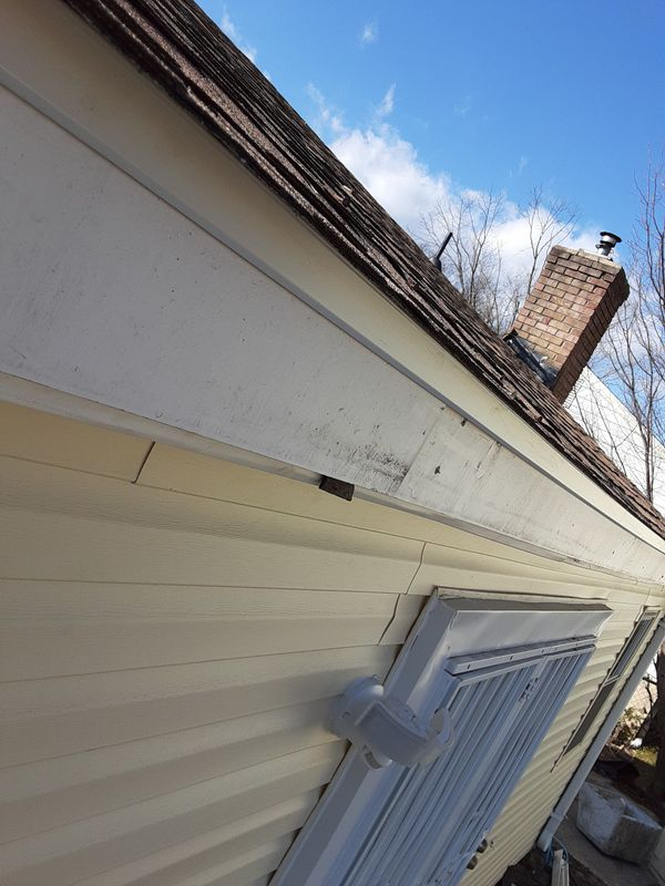 Shingle,TPO,slate,gutters siding all roof
