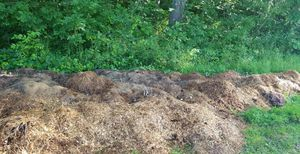 Free horse manure for gardening or composting for Sale in Fort Wayne, IN