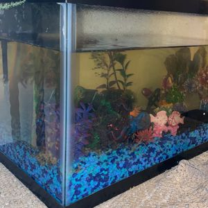 Fish Tank for Sale in Rio Linda, CA