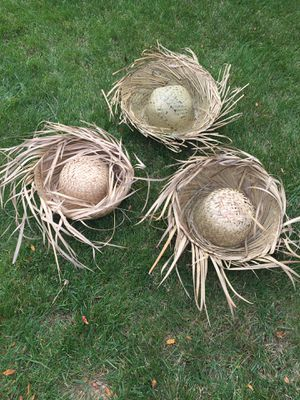 3 Straw Hats-Costume Accessory for Sale in South Elgin, IL