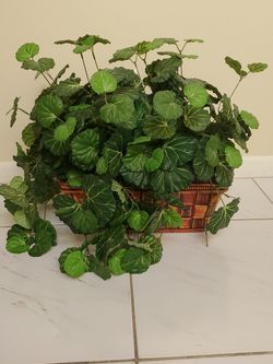 Green Artificial Plant In A Brown Color Basket for Sale in Boynton Beach,  FL