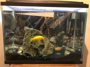 38 gal for Sale in Rancho Cucamonga, CA