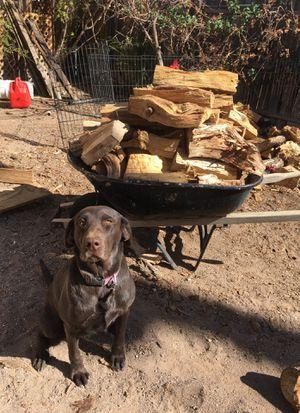 Fire wood/ campfire/bonfire/chimney for Sale in Henderson, NV