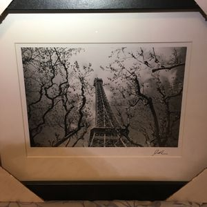The Eiffel Tower Through the Trees Framed Photograph for Sale in Portsmouth, VA