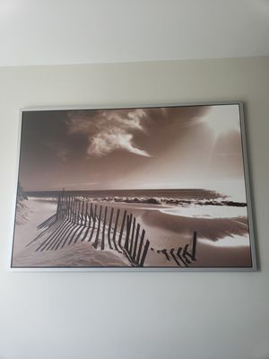 IKEA Sepia Framed Canvas Photography for Sale in Vienna, VA