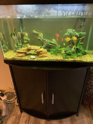 Aquarium kit for Sale in Lynnwood, WA