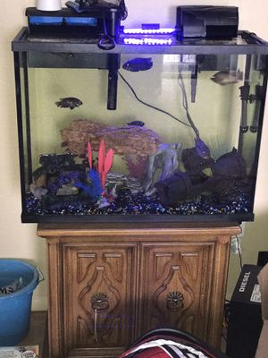 45 gallon fish tank for Sale in Alexandria, VA