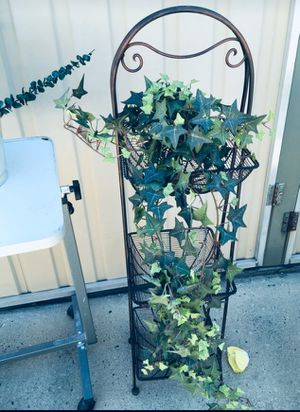 Plant for Sale in Fresno, CA