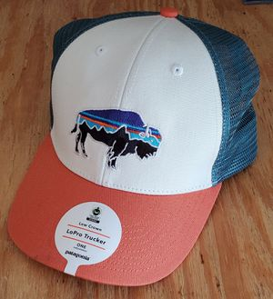 Patagonia Bison Hat for Sale in Saint AUG BEACH, FL