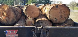 Fir firewood logs for sale for Sale in Bonney Lake, WA