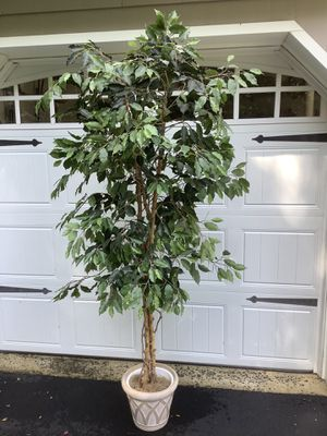 6 Faux Trees in Very Good Condition for Sale in Eatontown, NJ