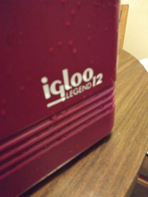 Igloo fits a 6 pack personal cooler for Sale in Addison, IL