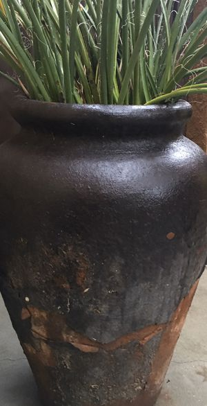 Plants and pots for Sale in Chula Vista, CA