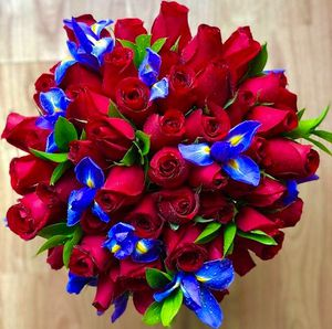 50 Fresh Red Roses & Iris Bouquet for Sale in Los Angeles, CA