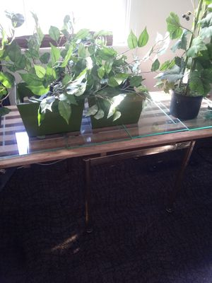 Table and all plants (artificial) $20 for Sale in Hendersonville, TN