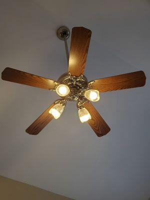 Free Fan!! for Sale in Naperville, IL