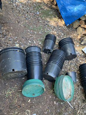Black plastic grow pots for vegetables plants for Sale in Wheat Ridge, CO