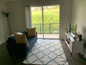 Wayfair sofa, TV stand, and a rug for Sale in Charlottesville, VA