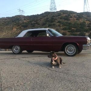 🚨1964 impala 🚨 sale or trade 🚨hurry won't last for Sale in Quartz Hill, CA