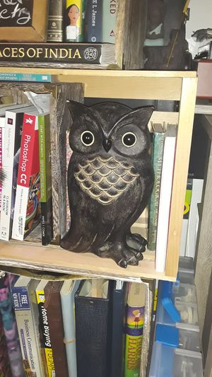 Solid wooden owl home decor for Sale in Dallas, TX