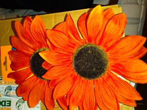 Fall floral clips for Sale in Clayton, NC