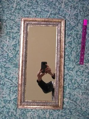 Wall Mirror for Sale in Lansing, MI