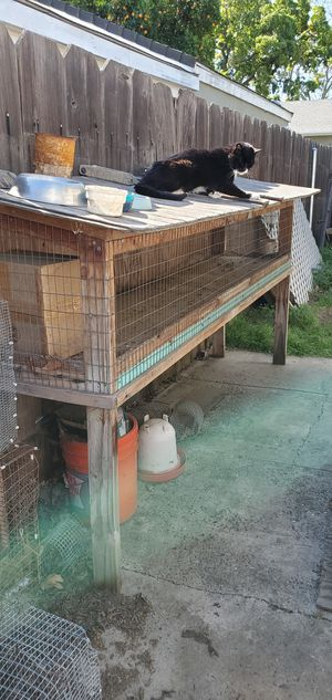 Rabbit hutch for Sale in Woodland, CA