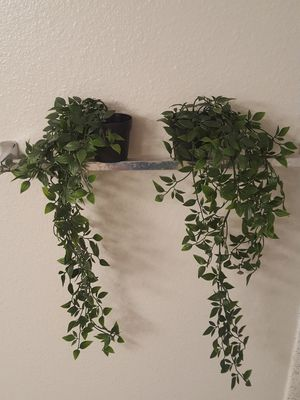 Ikea fake ivy plant for Sale in San Diego, CA