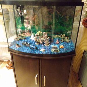 Complete 38 Gallon Bow Front Fish Tank Aquarium.. for Sale in Winter Haven, FL