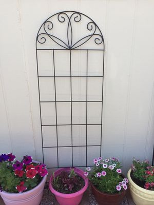 "# 275a. Metal Garden Trellis 20"" x 60"" for Sale in Chandler, AZ"