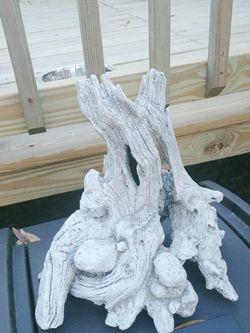 Aquarium Tank Tree Log for Sale in Citra,  FL