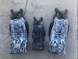3pc Owls Halloween Props Decorations for Sale in Peoria, AZ