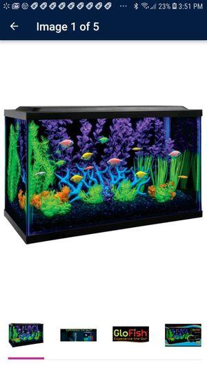 10 Gallon GloFish Aquarium Kit, LED Lighting, Water Filter, for Sale in Phoenix, AZ