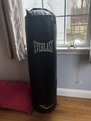 Punch Bag Everlast for Sale in Silver Spring, MD