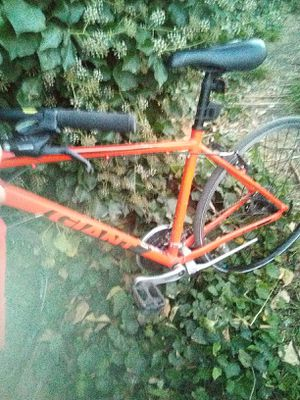 Giant Escape road bike 21 speed *like new* for Sale in Redwood City, CA