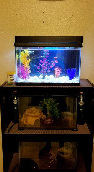 fish tank aquarium for Sale in Oxnard, CA