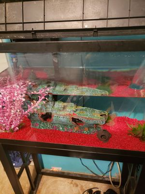 30 Gallon Fish Tank with Stand for Sale in Phelan, CA