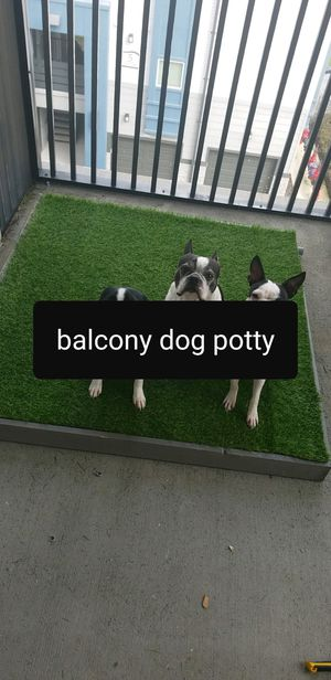 Dog potty for balcony with drain for Sale in Jacksonville, FL