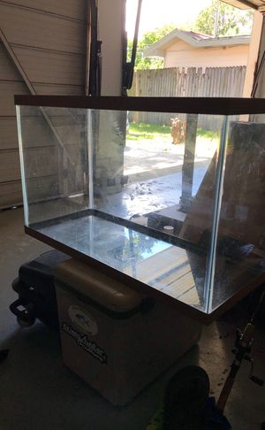 29 gal tank for Sale in Dunedin, FL