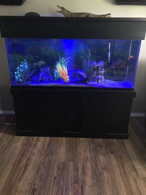 Aquarium 150 gallons custom stand and canopy tank and fish all for Sale in Lexington, KY