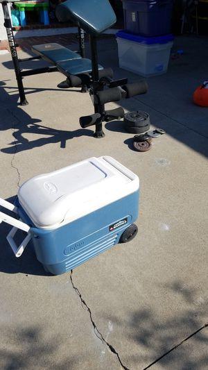 Igloo max cold for Sale in Huntington Beach, CA