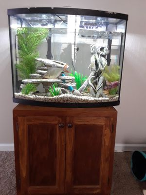 38 gallon fresh water fish tank for Sale in Lexington, KY