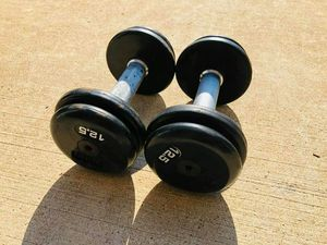 Dumbbells - 12.5lbs Dumbbells - Gym Equipment - Weights - Barbell - Rubberized Dumbbells for Sale in Woodridge, IL