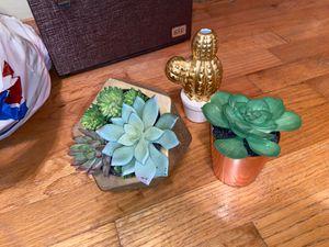 Fake Plants for Sale in Lynnwood, WA