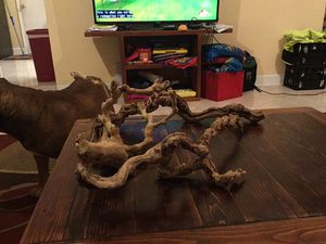 Three Lucky Reptile Premium Grapevines Large. for Sale in Peachtree City, GA